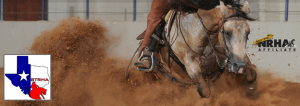 South Texas Reining Horse Association