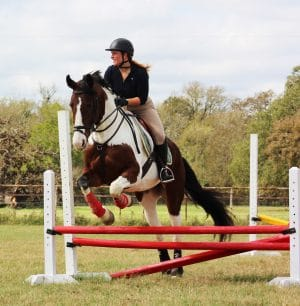 Austin Equestrian Center - Combined Test Series Spring 2018