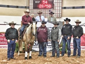 Horse Sales & Auctions 2018