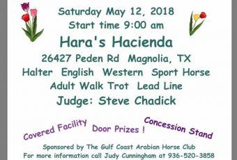 CGAHC Spring Fling Arabian Open Horse Show