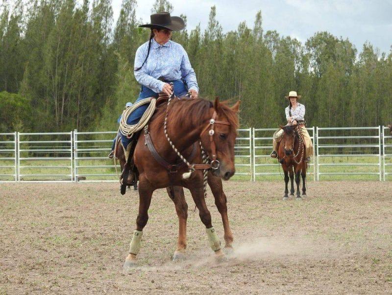 Events Lee Smith 3 Day Horsemanship Clinic 2018 Bastrop