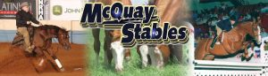 Complete Dispersal of McQuay Stables Reining Horses -  Legacy Reining Breeders Sale 2018